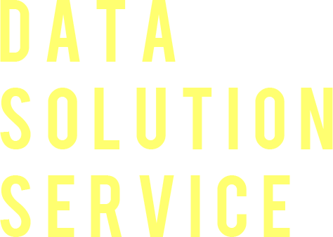 DATA SOLUTION SERVICE